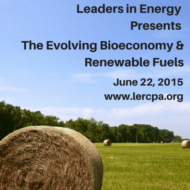 The Evolving Bioeconomy and Renewable Fuels