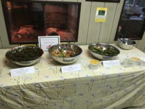 Delicious food and beverages donated by MOM′s Organic Market for our Green Leaders Retreat.