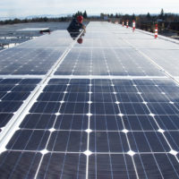 Virginia's rural co-ops learning lessons with community solar