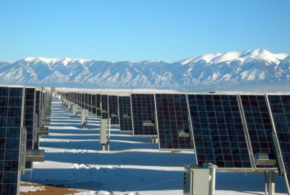 Skills you need to succeed in green energy and sustainability jobs