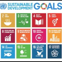 Impact Investing, Climate Change, and the SDG's