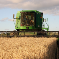 How Technology Is Affecting Agricultural Practices