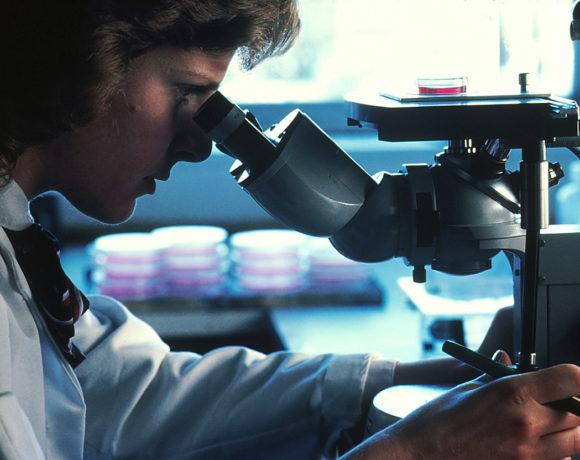 Wrestling the Nanotechnology Genie
