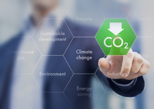 7 Ways to Reduce Your Carbon Footprint in 2019