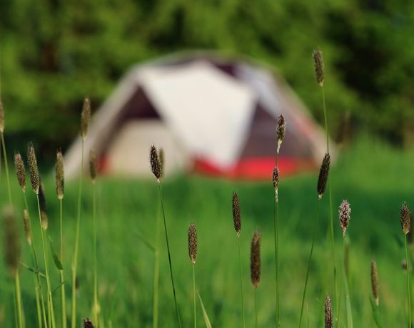 How to be a Conscientious Camper