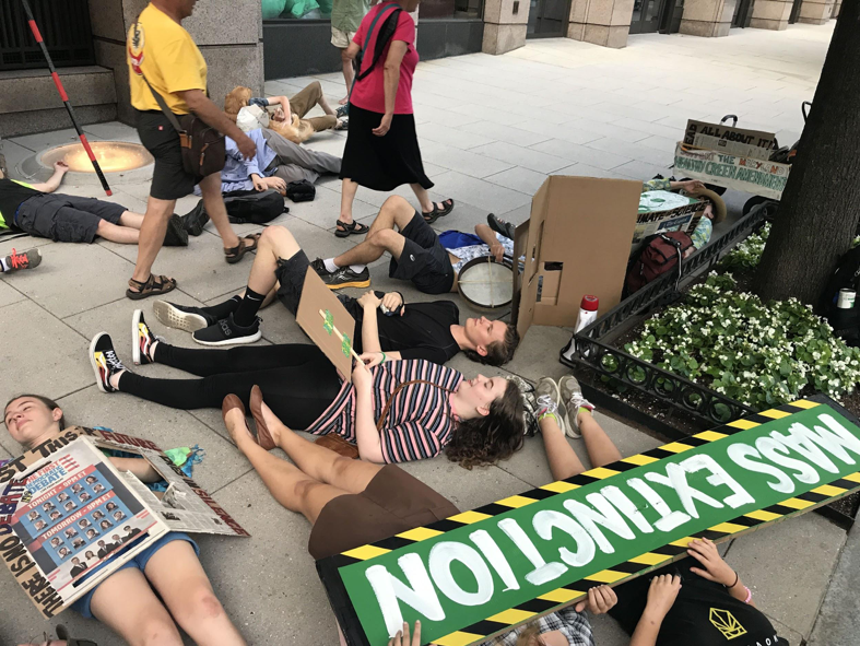 Fridays for Future protests strive to make climate action a priority for policymakers and businesses alike
