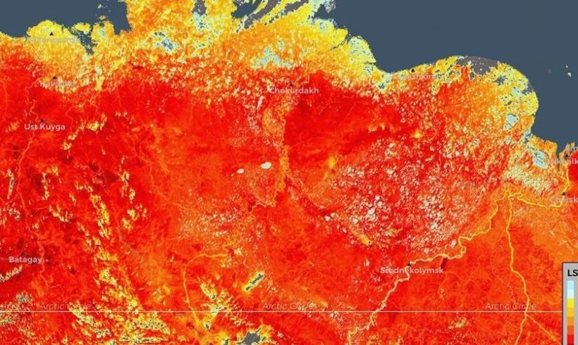 'Warning Sign of Major Proportions': Number of Siberian Forest Fires Increase Fivefold Since Record High Temperature
