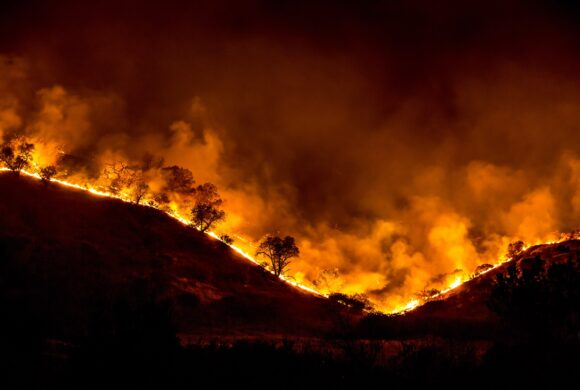 As Amazon and California Burn, New Analysis Warns Human Activity Driving Global Wildfire Surge