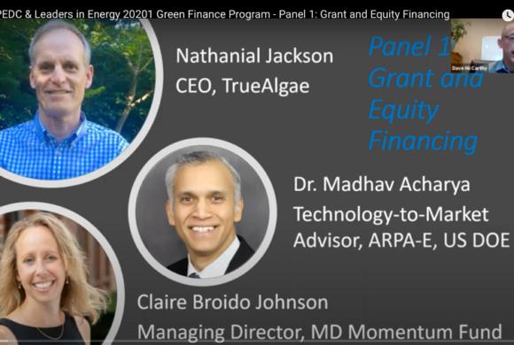 PEDC & Leaders in Energy Green Financing: Panel 1